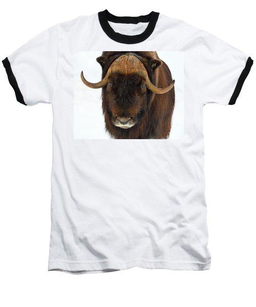 Head Butt Baseball T-Shirt by Tony Beck