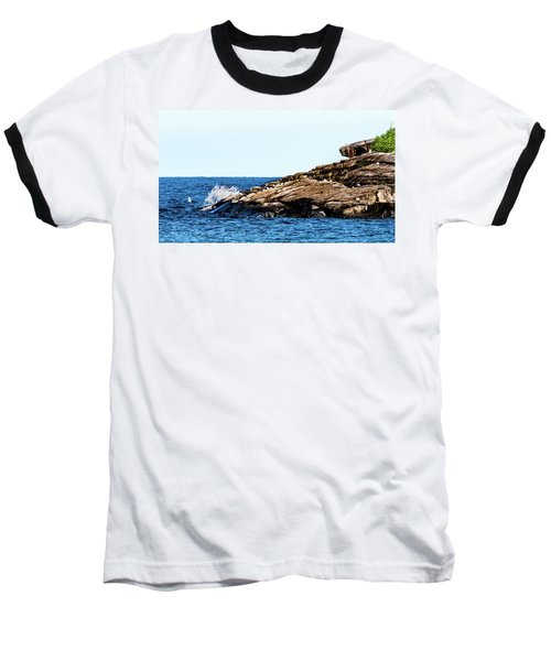 Herring Gull Picnic Baseball T-Shirt