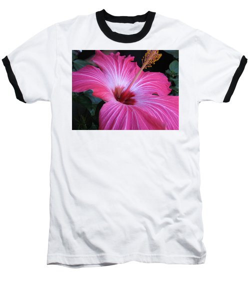 Hibiscus Photograph Baseball T-Shirt by Barbara Yearty