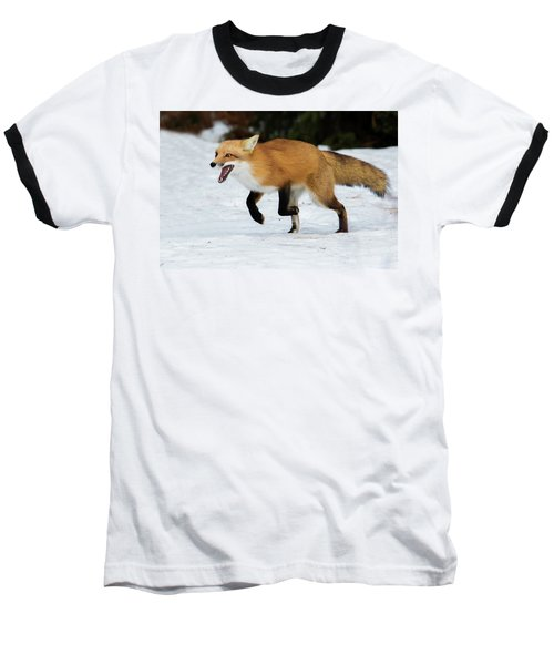 Baseball T-Shirt featuring the photograph High Speed Fox by Mircea Costina Photography