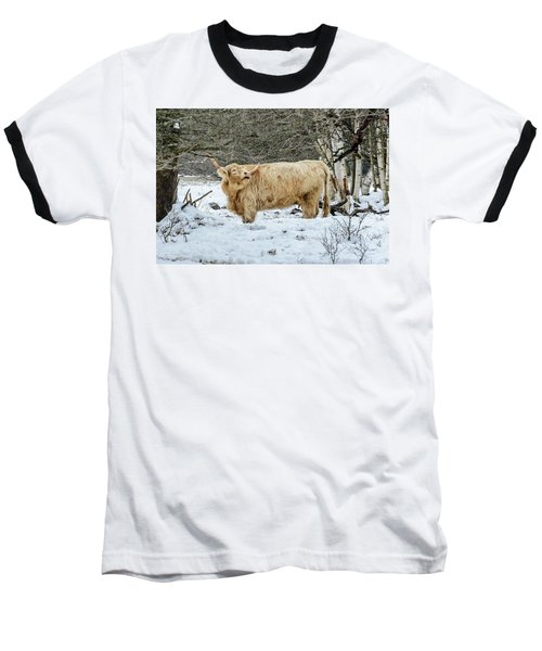 Highlander In Winter Baseball T-Shirt