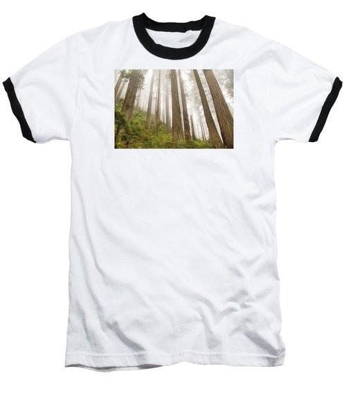 Hike Through The Redwoods Baseball T-Shirt
