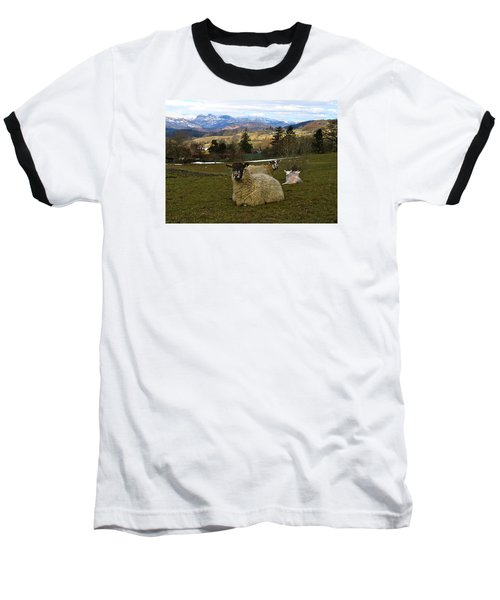 Hill Sheep Baseball T-Shirt