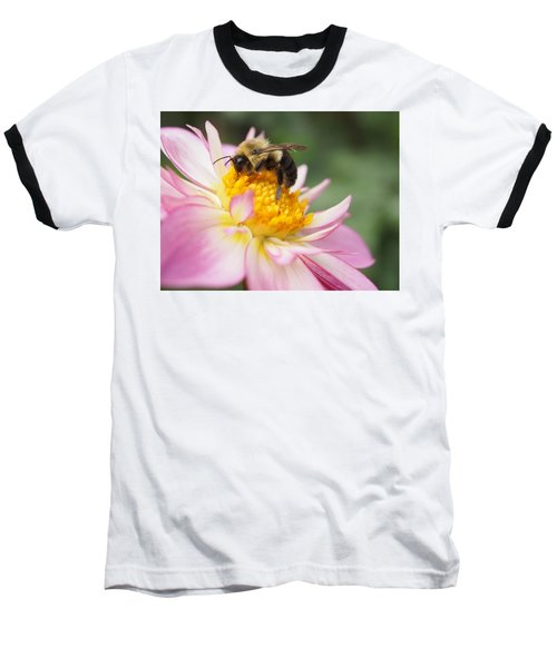 Honey Bee Baseball T-Shirt
