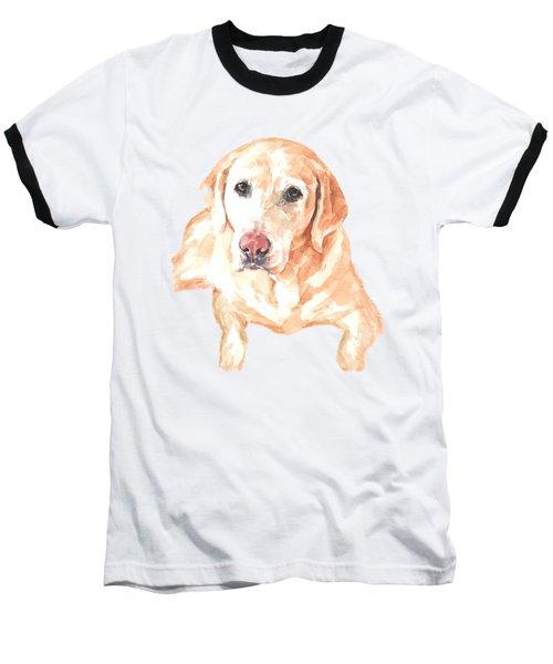 Honey Lab T-shirt Baseball T-Shirt by Herb Strobino