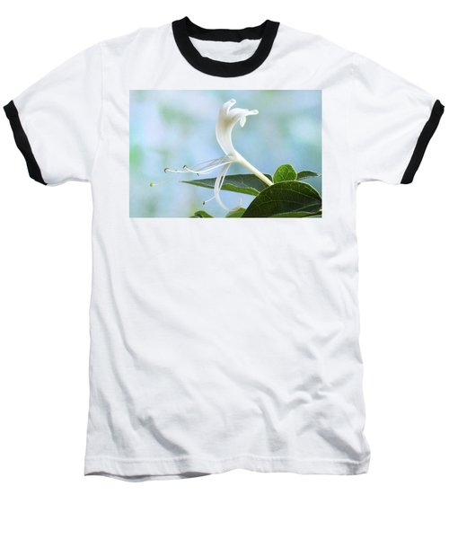 Baseball T-Shirt featuring the photograph Honeysuckle Portrait. by Terence Davis