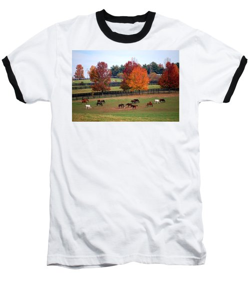 Horses Grazing In The Fall Baseball T-Shirt by Sumoflam Photography