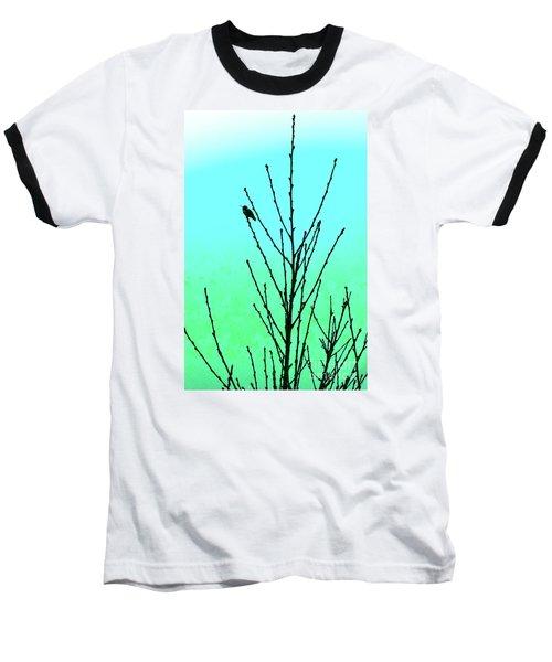 Hummingbird After Rain Baseball T-Shirt