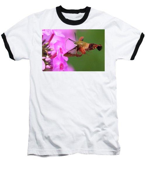 Hummingbird Moth Feeding 2 Baseball T-Shirt