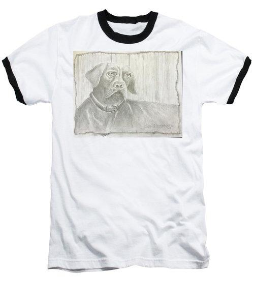 Hunting Dog Baseball T-Shirt
