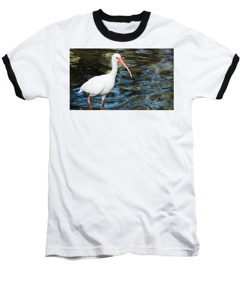 Ibis In The Swamp Baseball T-Shirt by Kenneth Albin