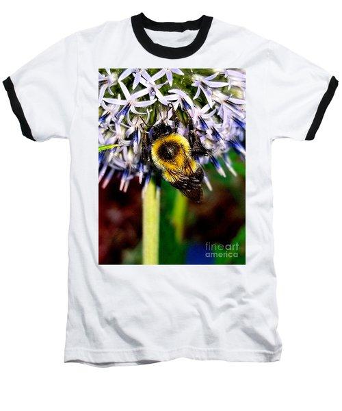 I'll Bee Back Baseball T-Shirt