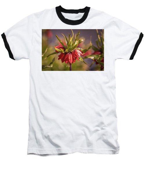 Imperial Crown #g3 Baseball T-Shirt by Leif Sohlman