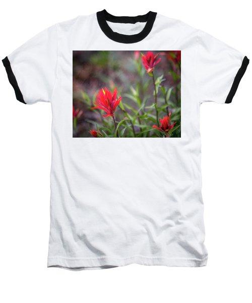 Indian Hawthorne Baseball T-Shirt