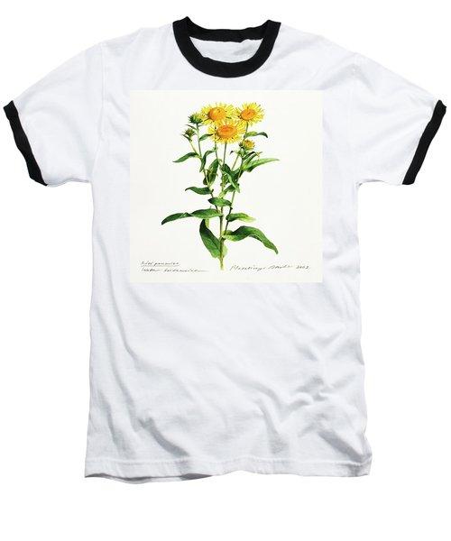 Inula Baseball T-Shirt