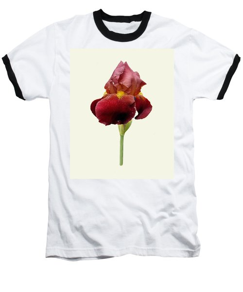Baseball T-Shirt featuring the photograph Iris Vitafire Cream Background by Paul Gulliver