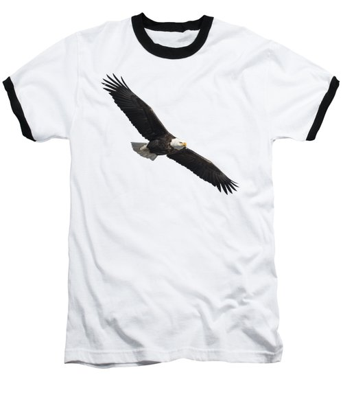 Isolated American Bald Eagle 2016-2 Baseball T-Shirt by Thomas Young