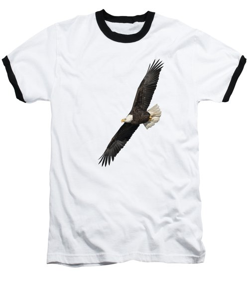 Isolated American Bald Eagle 2016-3 Baseball T-Shirt by Thomas Young