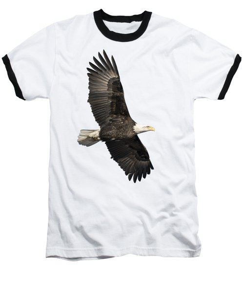 Isolated American Bald Eagle 2016-4 Baseball T-Shirt by Thomas Young