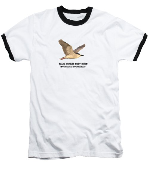 Isolated Black-crowned Night Heron 2017-6 Baseball T-Shirt by Thomas Young