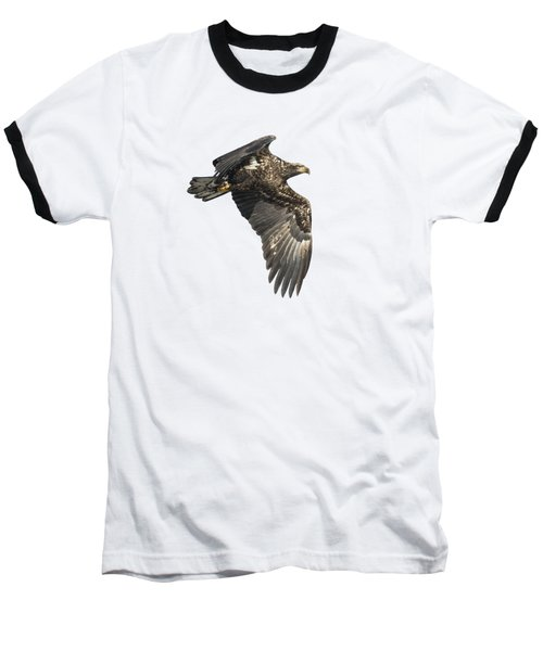 Isolated Eagle 2017-2 Baseball T-Shirt by Thomas Young
