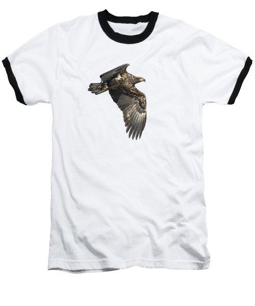 Isolated Eagle 2017-2 Baseball T-Shirt