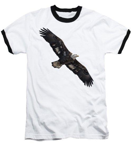 Isolated Juvenile American Bald Eagle 2016-1 Baseball T-Shirt