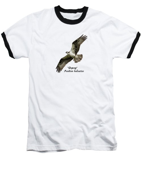 Isolated Osprey 2017-1 Baseball T-Shirt
