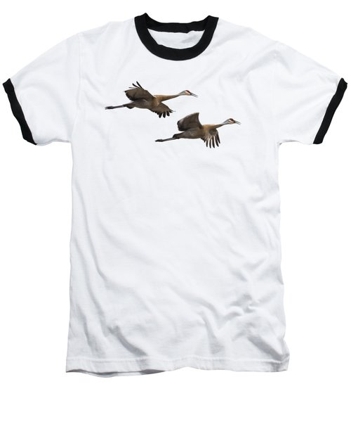 Isolated Sandhill Cranes 2016-1 Baseball T-Shirt by Thomas Young