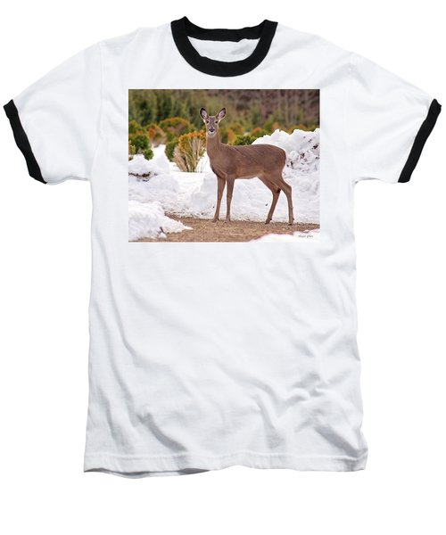 Baseball T-Shirt featuring the photograph Junior by Angel Cher