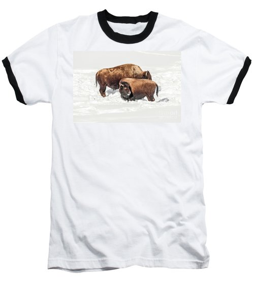 Juvenile Bison With Adult Bison Baseball T-Shirt by Sue Smith