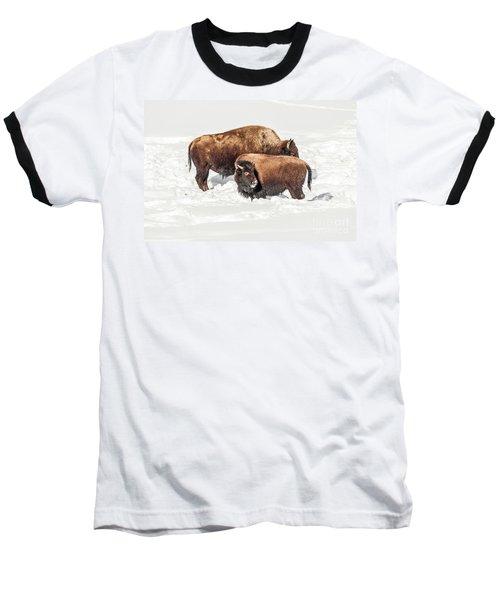 Juvenile Bison With Adult Bison Baseball T-Shirt