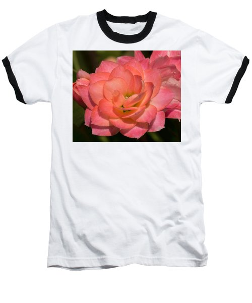 Kalanchoe Baseball T-Shirt
