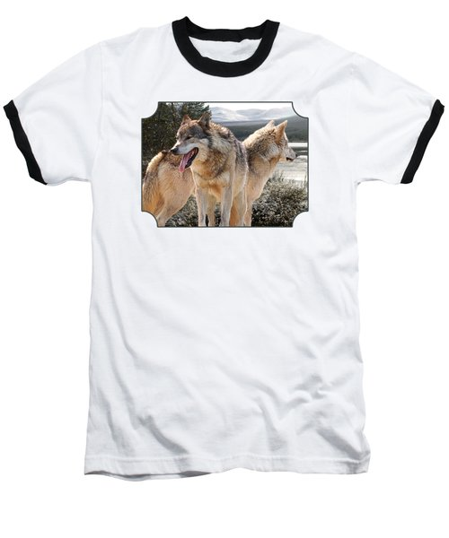 Keeping Watch - Pair Of Wolves Baseball T-Shirt by Gill Billington
