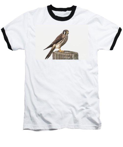 Kestrel Portrait Baseball T-Shirt by Robert Frederick