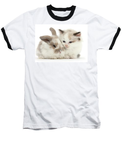 Kitten Cute Baseball T-Shirt