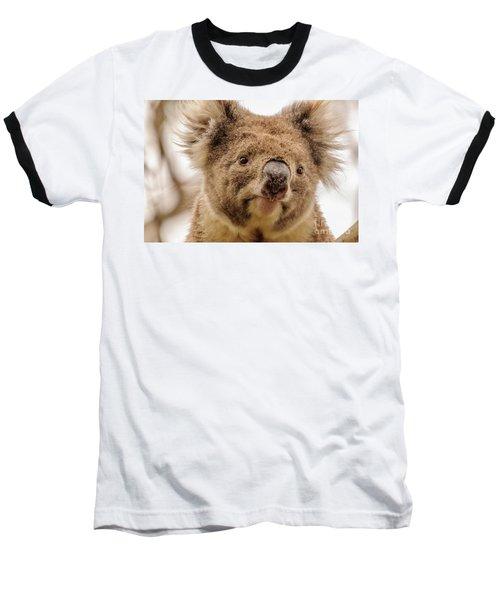 Koala 4 Baseball T-Shirt