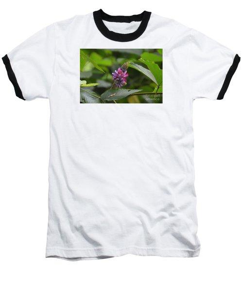 Kudzu Baseball T-Shirt