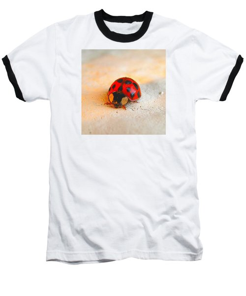 Baseball T-Shirt featuring the photograph Lady Bug 2 by John King