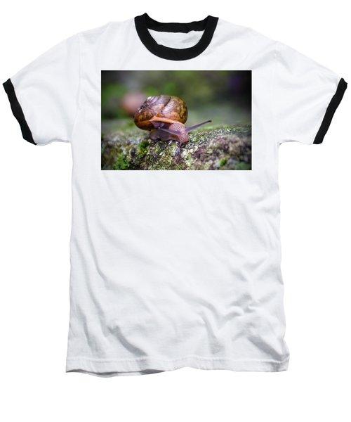 Land Snail II Baseball T-Shirt
