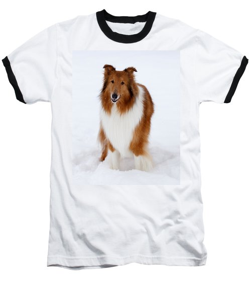 Lassie Enjoying The Snow Baseball T-Shirt