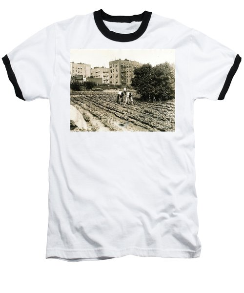 Last Working Farm In Manhattan Baseball T-Shirt by Cole Thompson