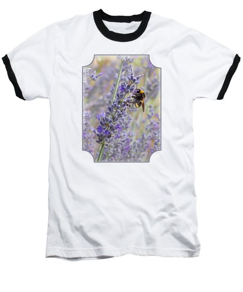 Lavender Bee Baseball T-Shirt