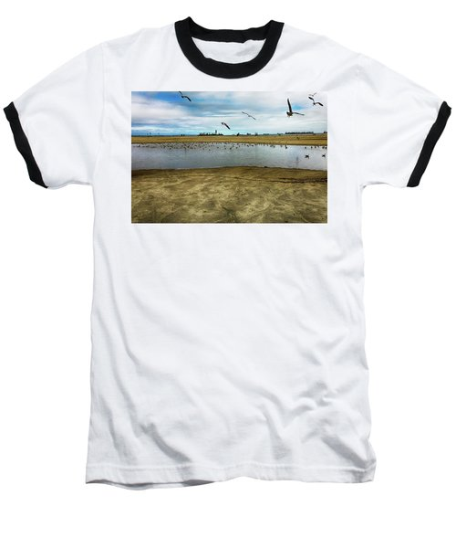 Lb Seagull Pond Baseball T-Shirt by Joseph Hollingsworth