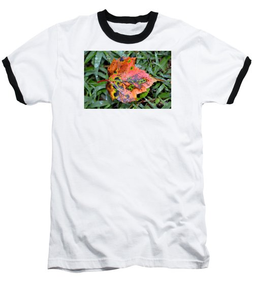 Leaf It Be Baseball T-Shirt by Lew Davis