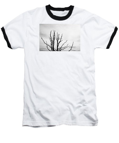 Leafless Tree Baseball T-Shirt