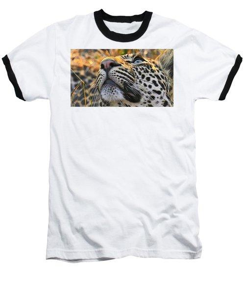 Leopard Aloft Baseball T-Shirt