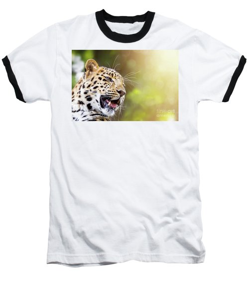 Leopard In Sunlight Baseball T-Shirt