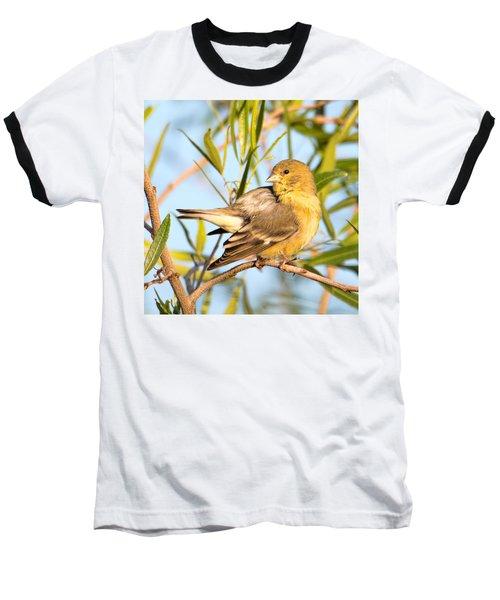 Baseball T-Shirt featuring the photograph Lesser Goldfinch by Dan McManus