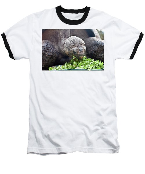 Baseball T-Shirt featuring the photograph Lettuce Makes You Strong by Miroslava Jurcik